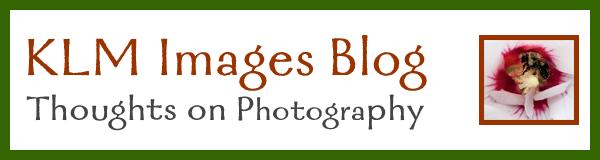 Button-KLM Images-Blog